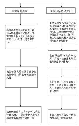2017年福建生育保险报销流程