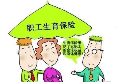 深圳生育保险政策解析
